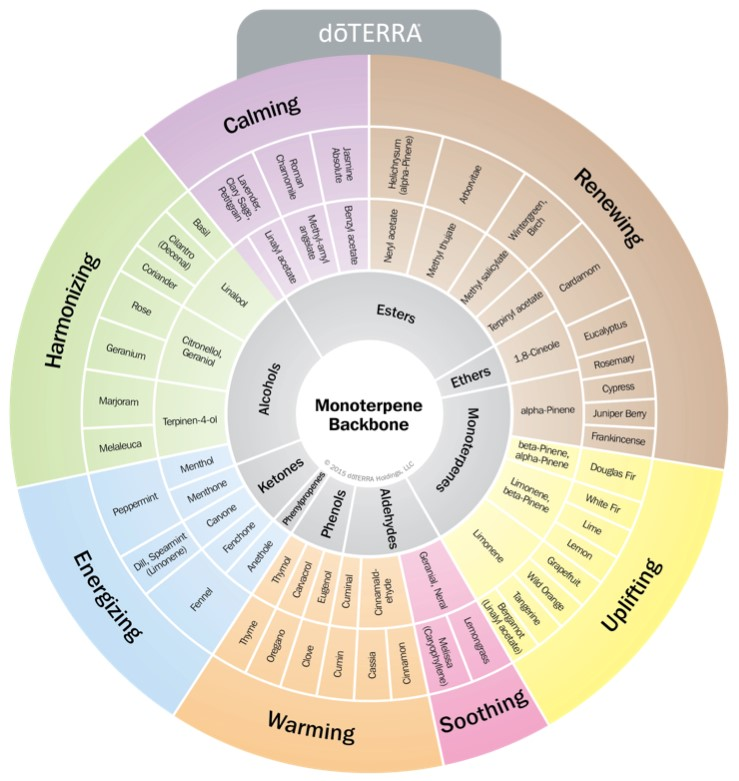Doterra Oil Wellness Wheel